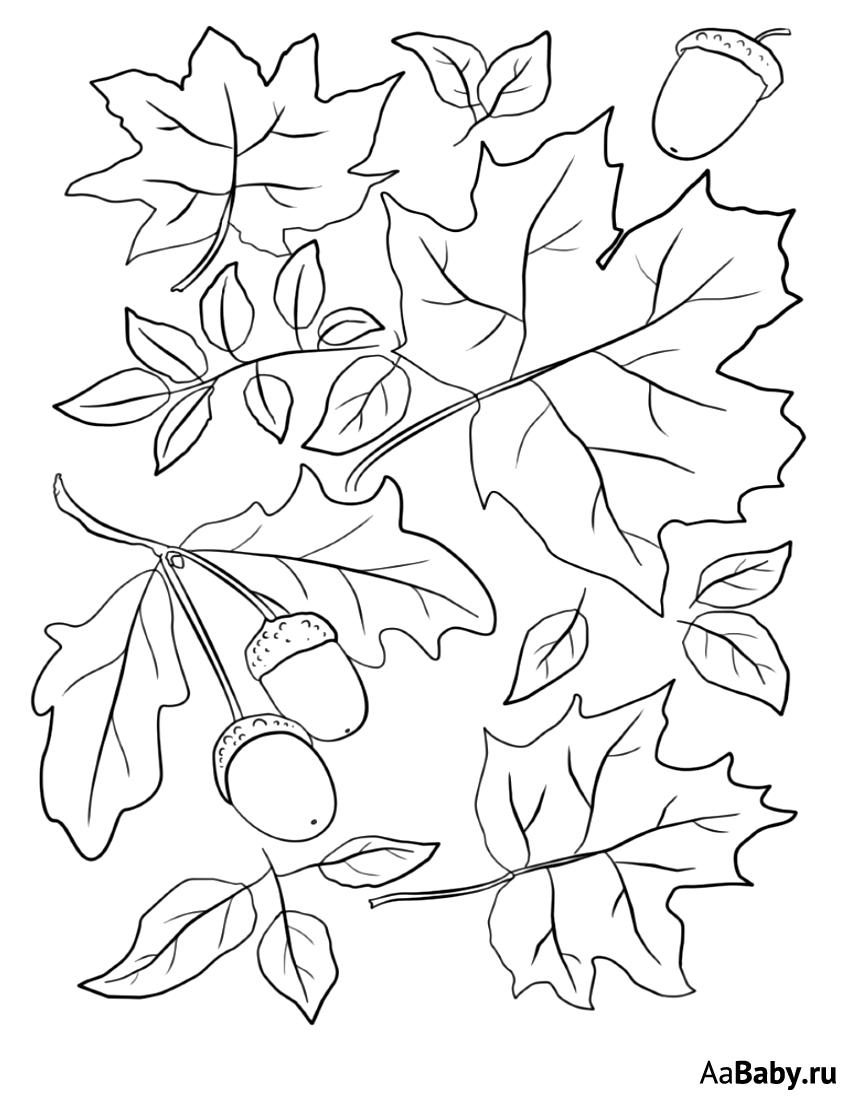 Картинки осенних листьев разукрашки для тут