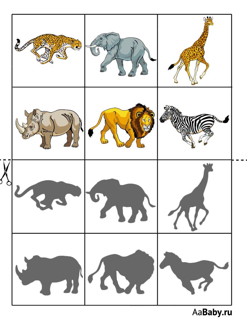 Развивающие картинки с дикими животными