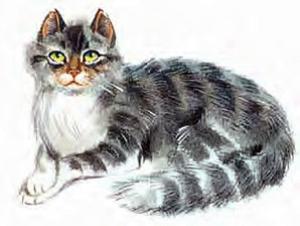 Краткое содержание кот васька